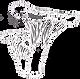 champignons-doodles-croquis-main-clipart