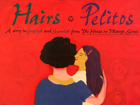 Bilingüe Book Buddy: Hairs Pelitos