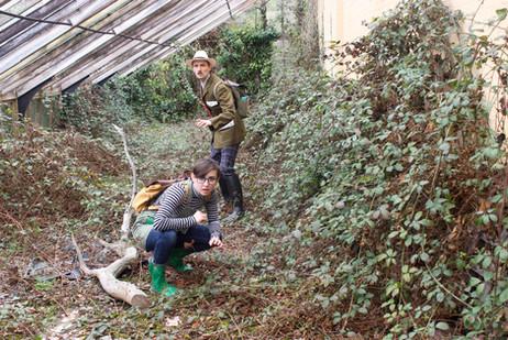 Mortimer Sparks & The Perilous Plants