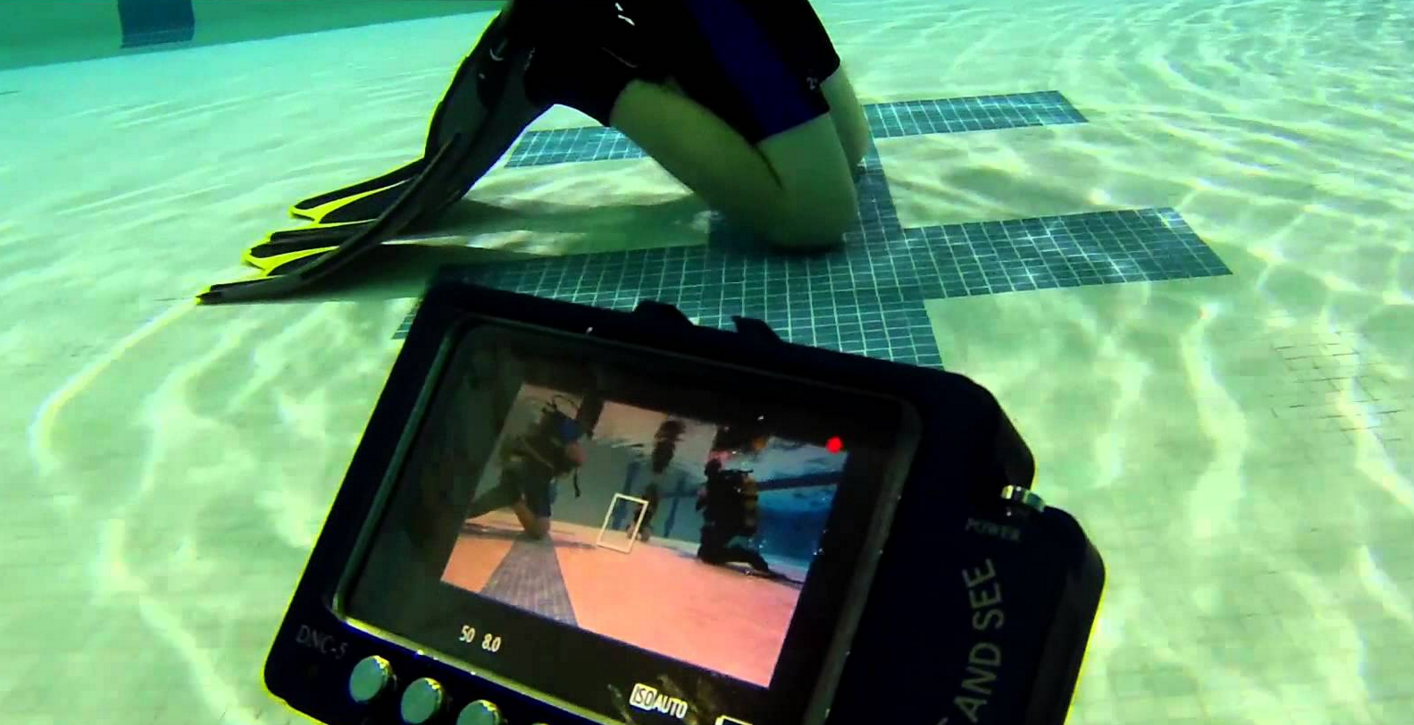 UNDERWATER IP67 MONITOR