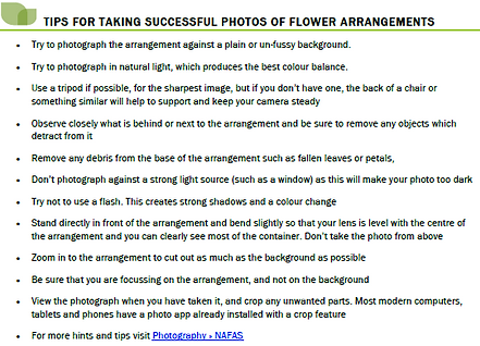 Top tips floral photos.PNG