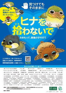 B4・日本鳥類保護連盟(2021年版)-1_imgs-0001.jpg