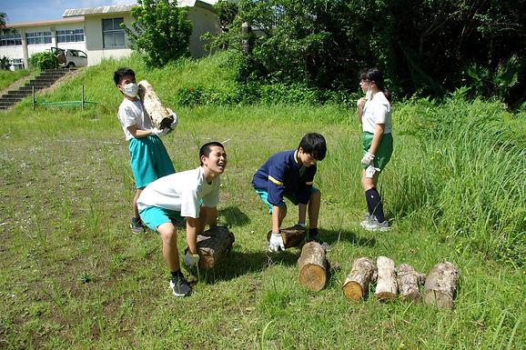学校名:八丈町立富士中学校