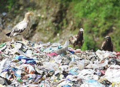 nepal-gomishuusekijyou.jpg