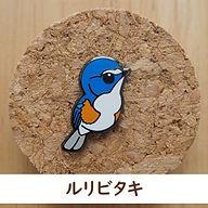 pins_7.jpg