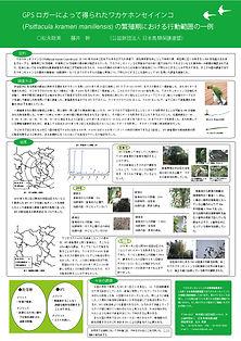 wakake_gakkaiposter2019_b.jpg