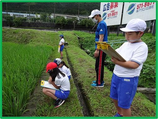 学校名:飯塚市立八木山小学校