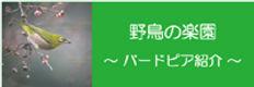 bp_banner.jpg