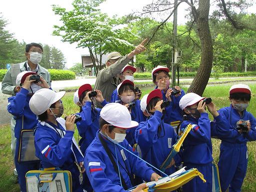 学校名:新発田市立藤塚小学校