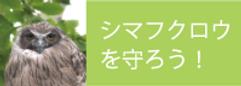 simafukuro_banner.png