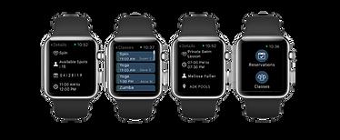Apple Watch Mock.png