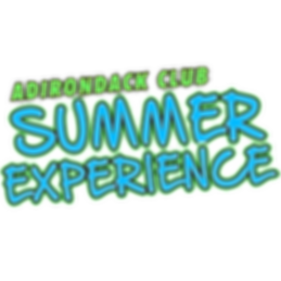 Summer Experience Logo.png
