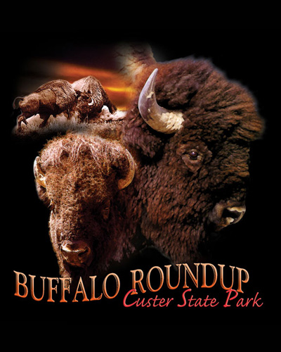 Buffalo Roundup Custer State Park