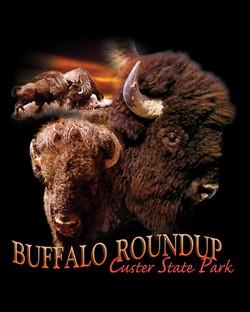 Buffalo Roundup Custer State Park