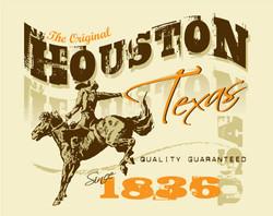 Houston Texas 1836