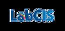 Logo labcis .png