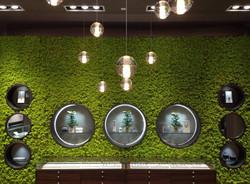Mosswall by Verde Profilo