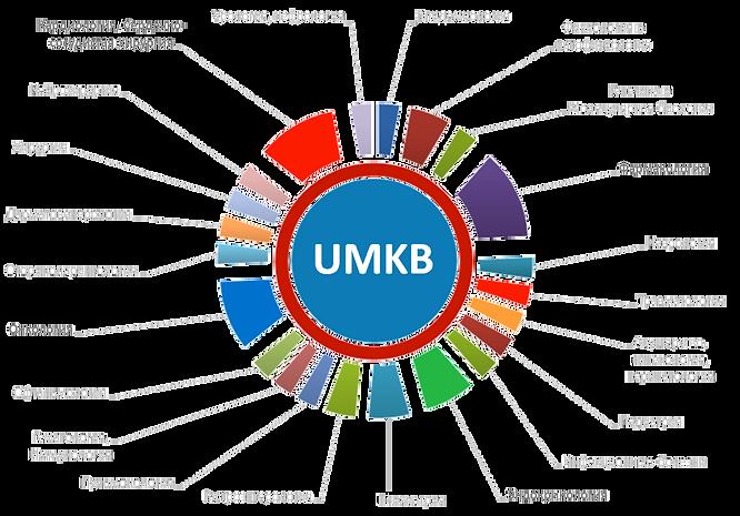 UMKB Объединенная База Медицинских Знаний. Облачная технология для создания экспертных систем в области медицины