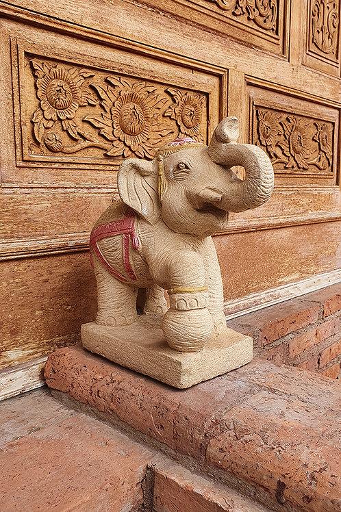 Elephants of Thailand