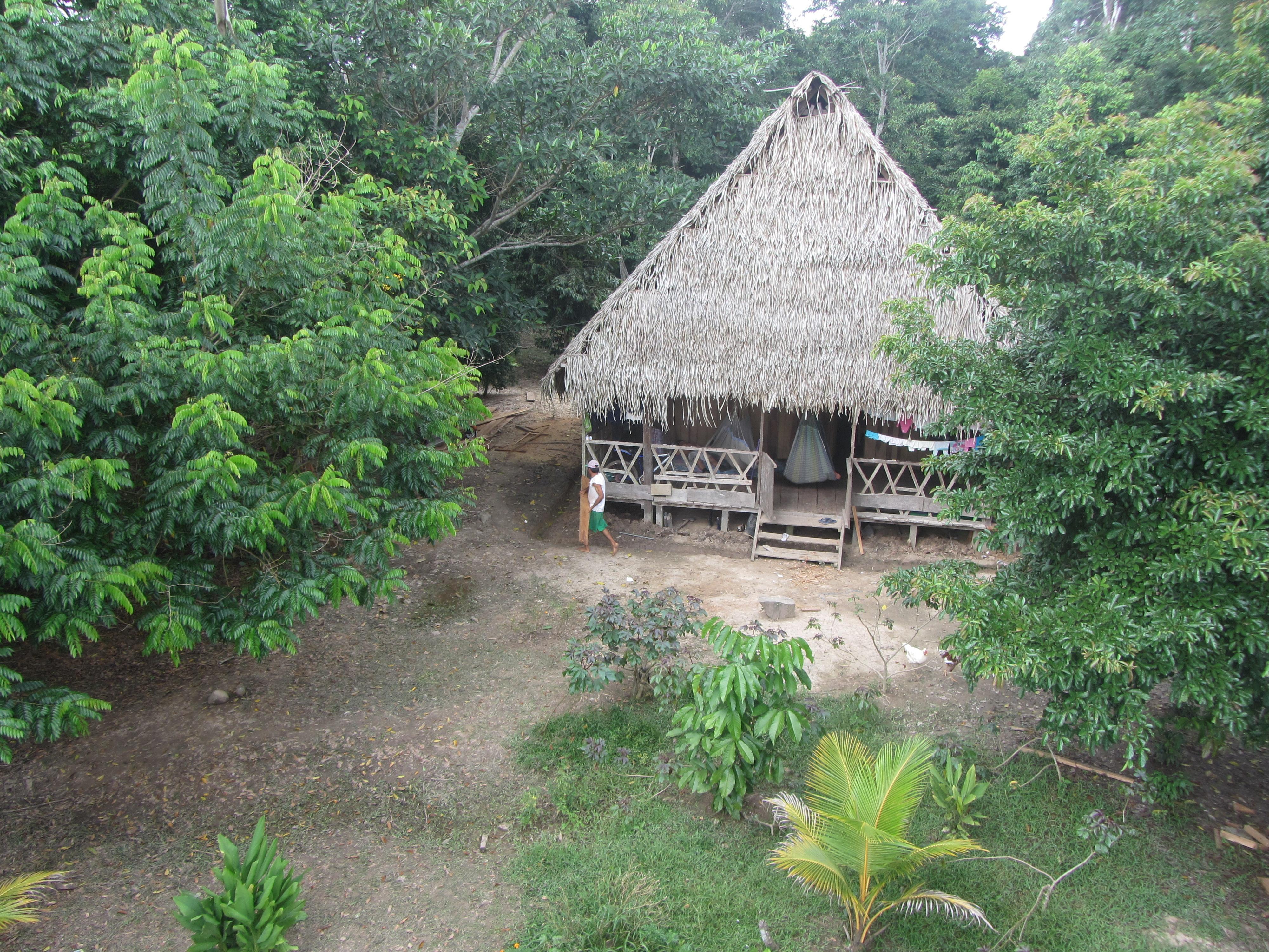 casa ayahuasca ojo de luna