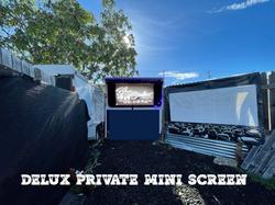 Private Mini Screen (Deluxe Edition) you pick the Flick