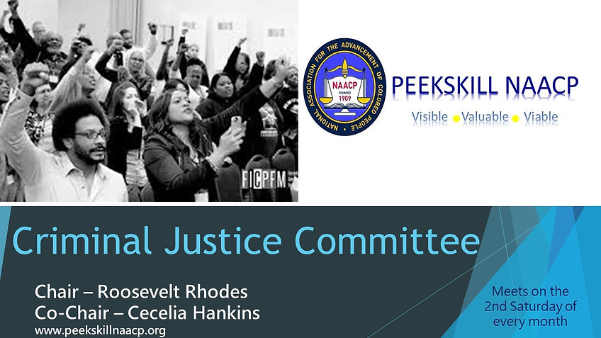 Criminal Justice Committee Flyer.jpg