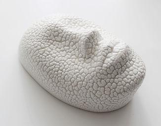 Copy of Porcelain Face Mask