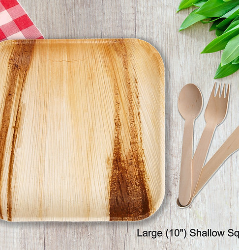 Large Plates & Cutlery Set