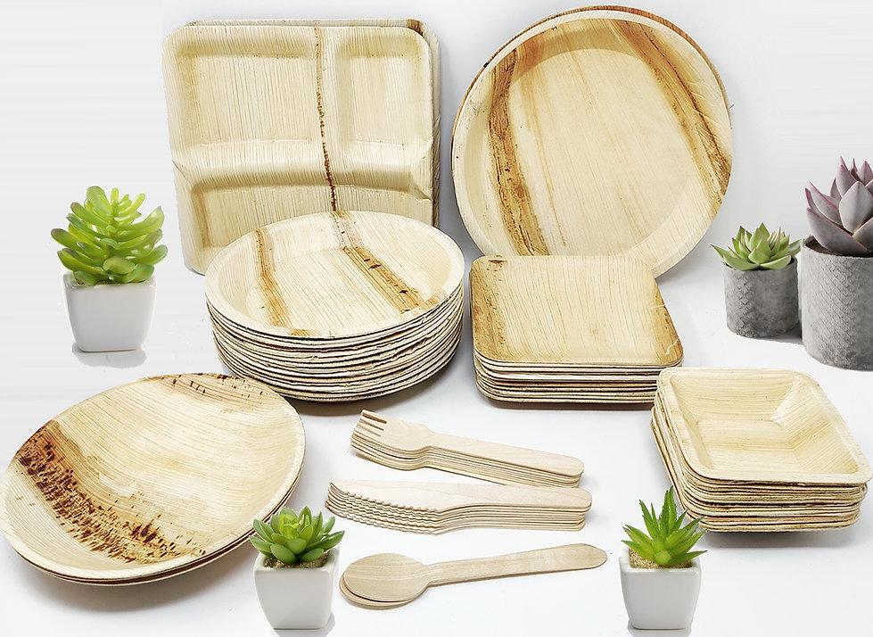 Palm Leaf Ecofriendly Disposable Tableware