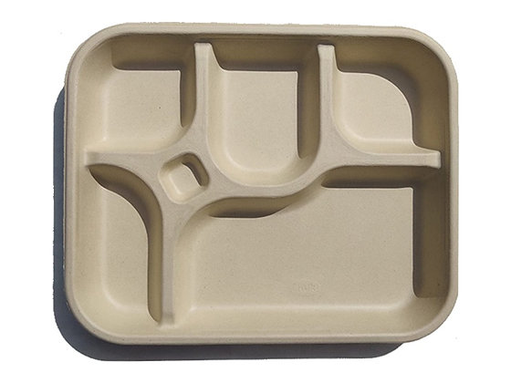 6 Compartment Rectangle Plate (Bagasse)