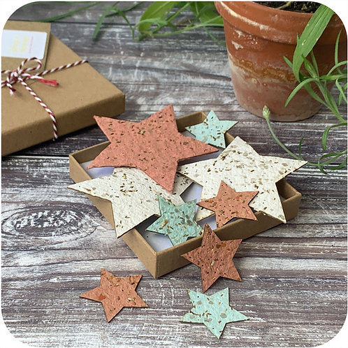 Father's Day Plantable  Stars Letterbox Gift