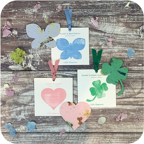 Mother's Day Plantable Gift Set