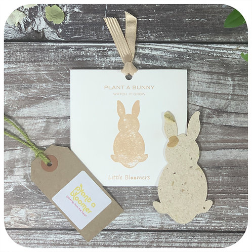Plant a Bunny