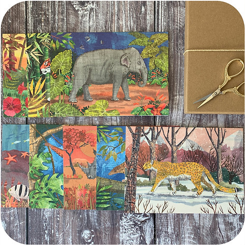 Xmas Embroider Me Set Of Eight Greetings Endangered Animals