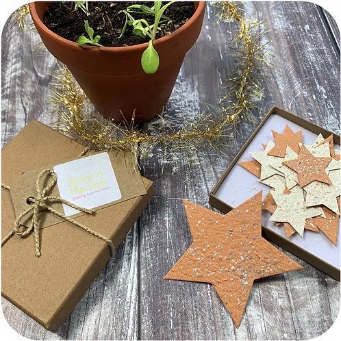 Plantable Stars Gift Box