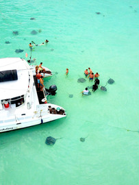 Inflight Drone Sting Ray City