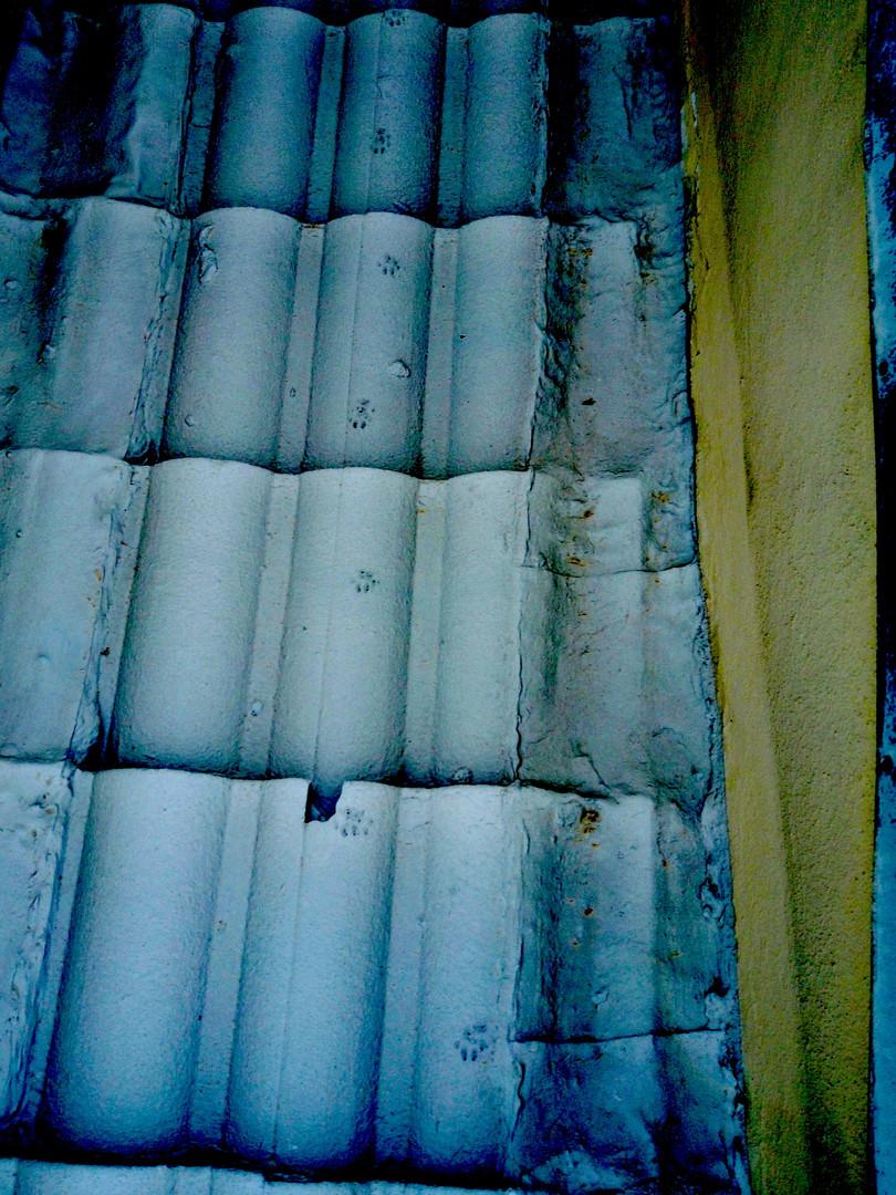 In depth exposure roof inspection