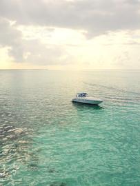 Inflight Drone Ocean Shot