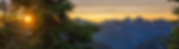 banner5.png
