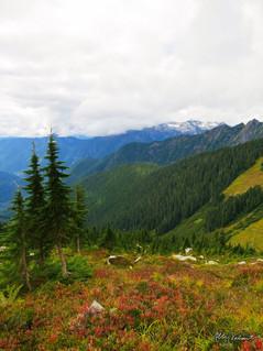 En Route to Hidden Lake, North Cascades