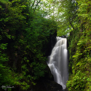 Glenariff Forest Park, Ireland