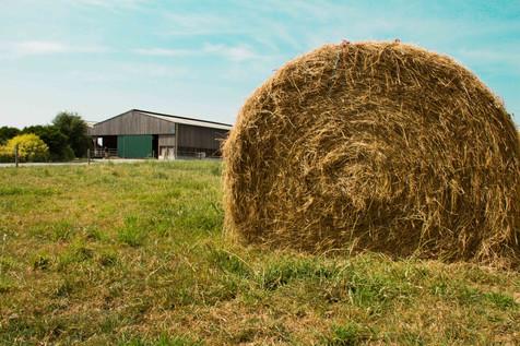 photographe agriculteur