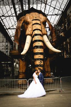 mariage elephant