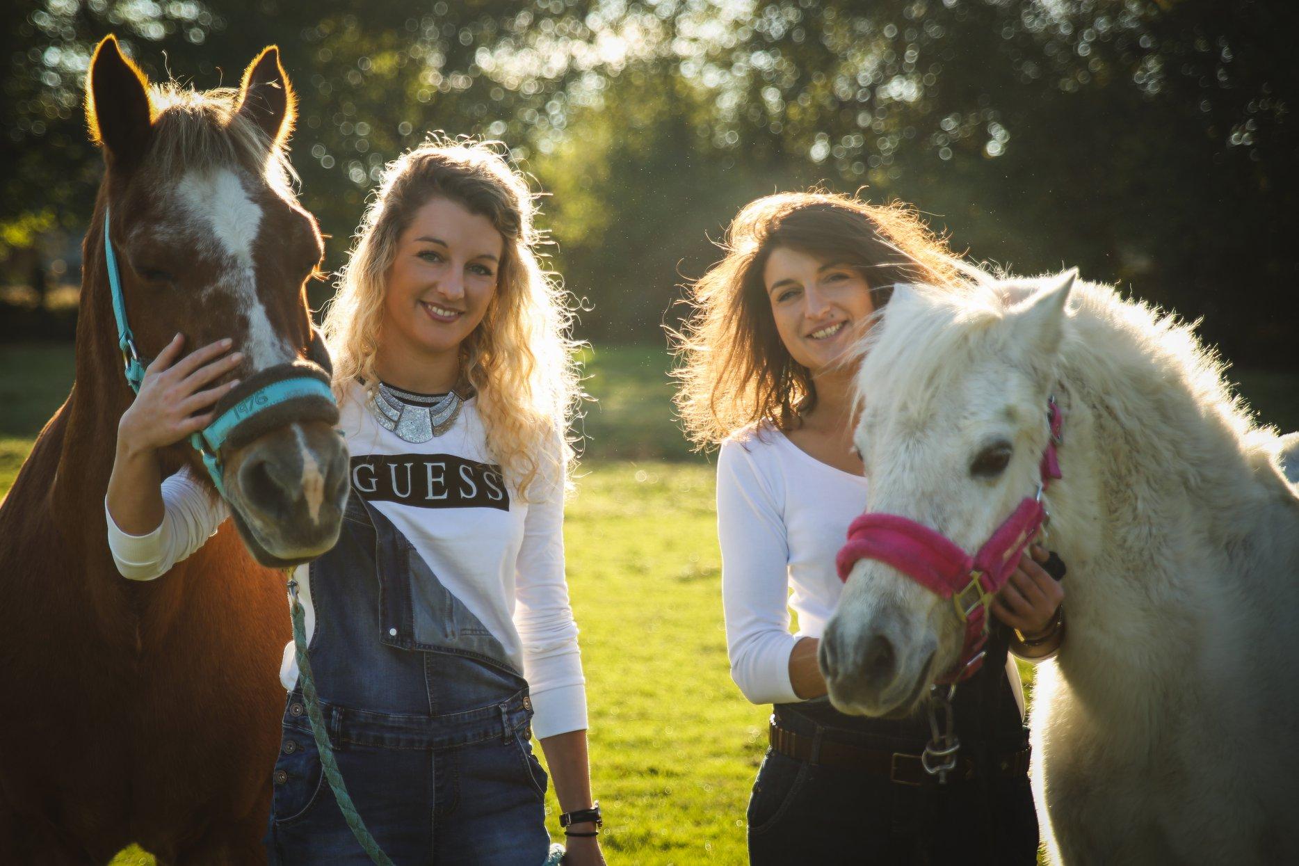 life style chevaux