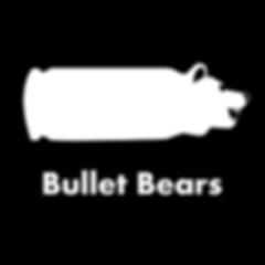 BulletBears_Logo_2048x2048.png