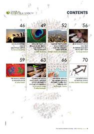 Social enterprise_Content page 2.PNG