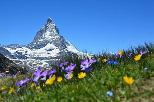 Zermatt - Image by Claudia Beyli.jpg