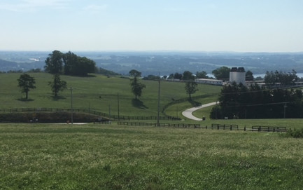 Wrightsville Highpoint Overlook