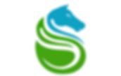Superlative Logo