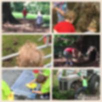 20160908_153102387_iOS.jpg